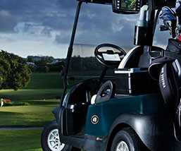 Electric Vehicle & Golf Cart